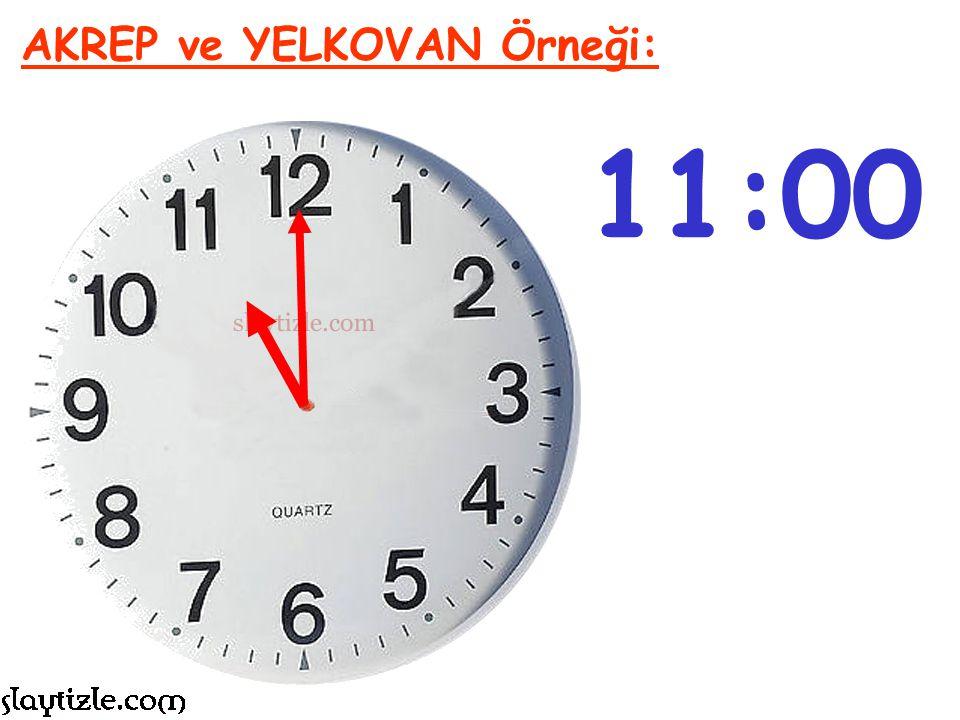 6:00 AKREP ve YELKOVAN Örneği: