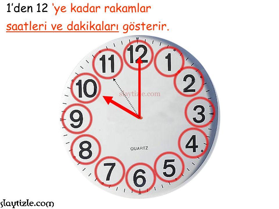 Bir gün 24 saatten oluşur. Bu 24 saat, resimdeki saatte 12+12 saat olarak izlenir.