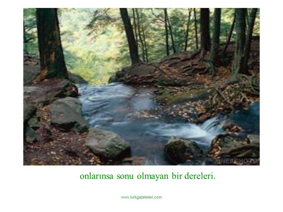 www.turkgazeteleri.com onlarınsa sonu olmayan bir dereleri.