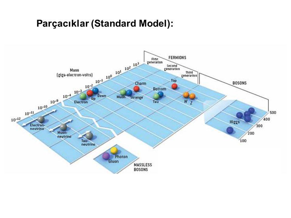 Parçacıklar (Standard Model):