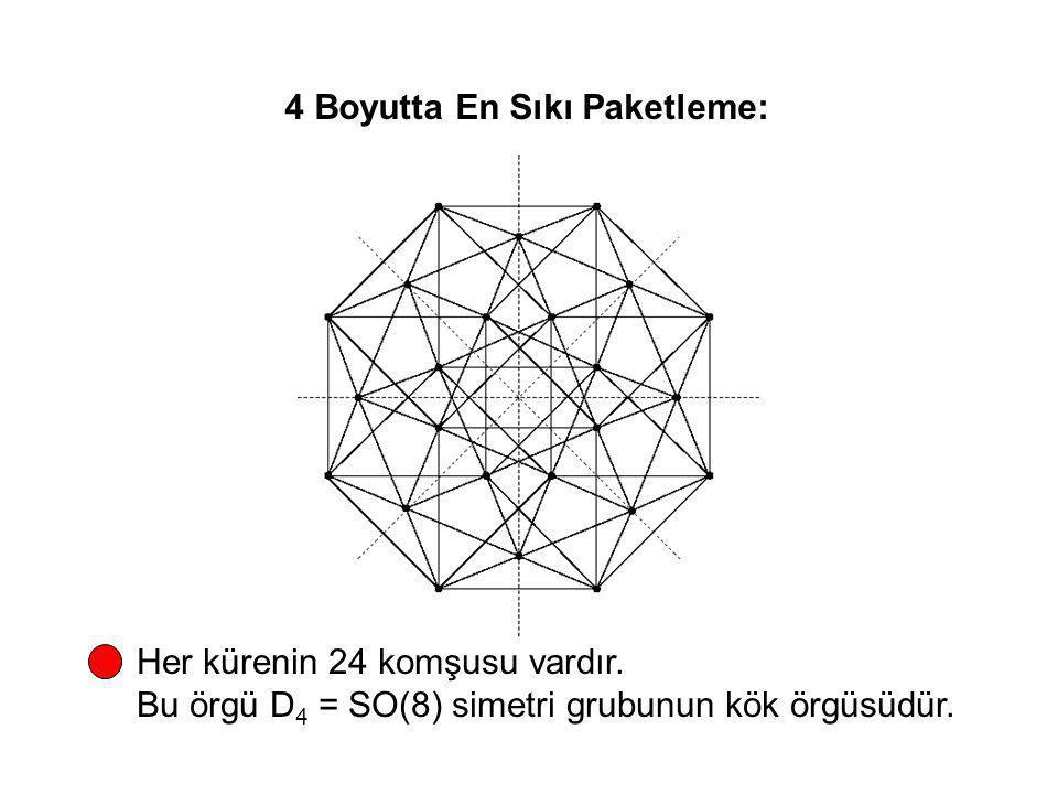 4 Boyutta En Sıkı Paketleme: Her kürenin 24 komşusu vardır. Bu örgü D 4 = SO(8) simetri grubunun kök örgüsüdür.