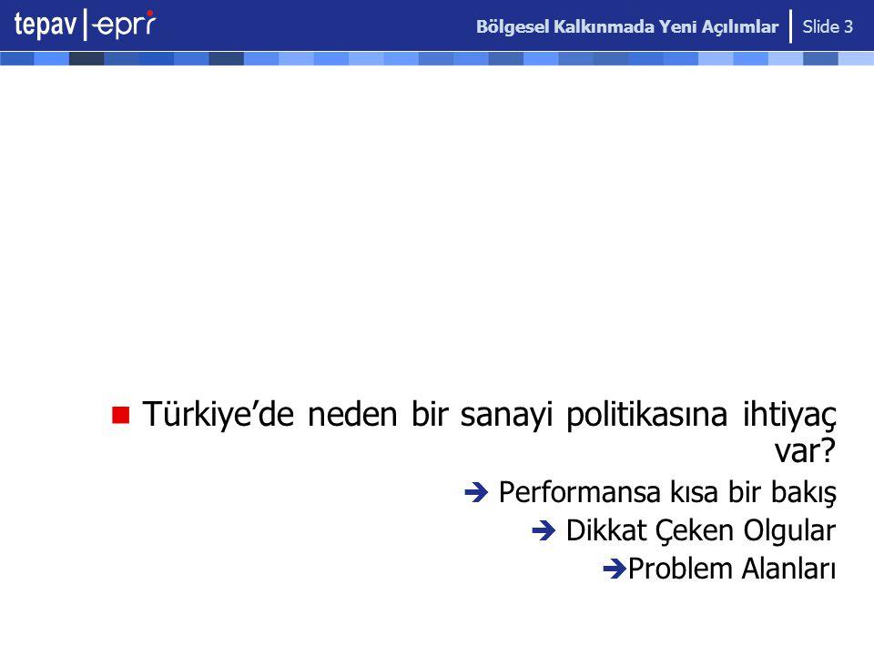 Bölgesel Kalkınmada Yeni Açılımlar Slide 3  Türkiye'de neden bir sanayi politikasına ihtiyaç var?  Performansa kısa bir bakış  Dikkat Çeken Olgular