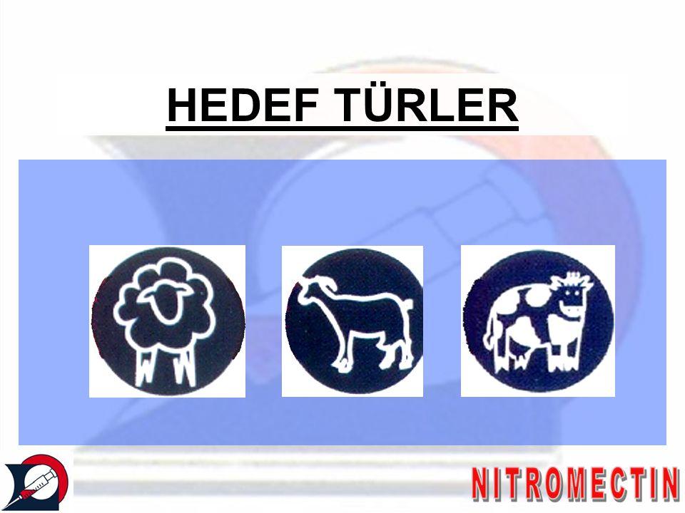 HEDEF TÜRLER