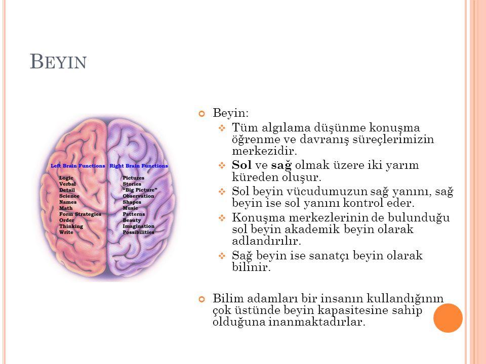 B EYIN Beyin:  Tüm algılama düşünme konuşma öğrenme ve davranış süreçlerimizin merkezidir.  Sol ve sağ olmak üzere iki yarım küreden oluşur.  Sol b