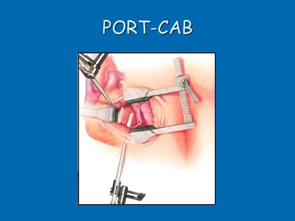PORT-CAB