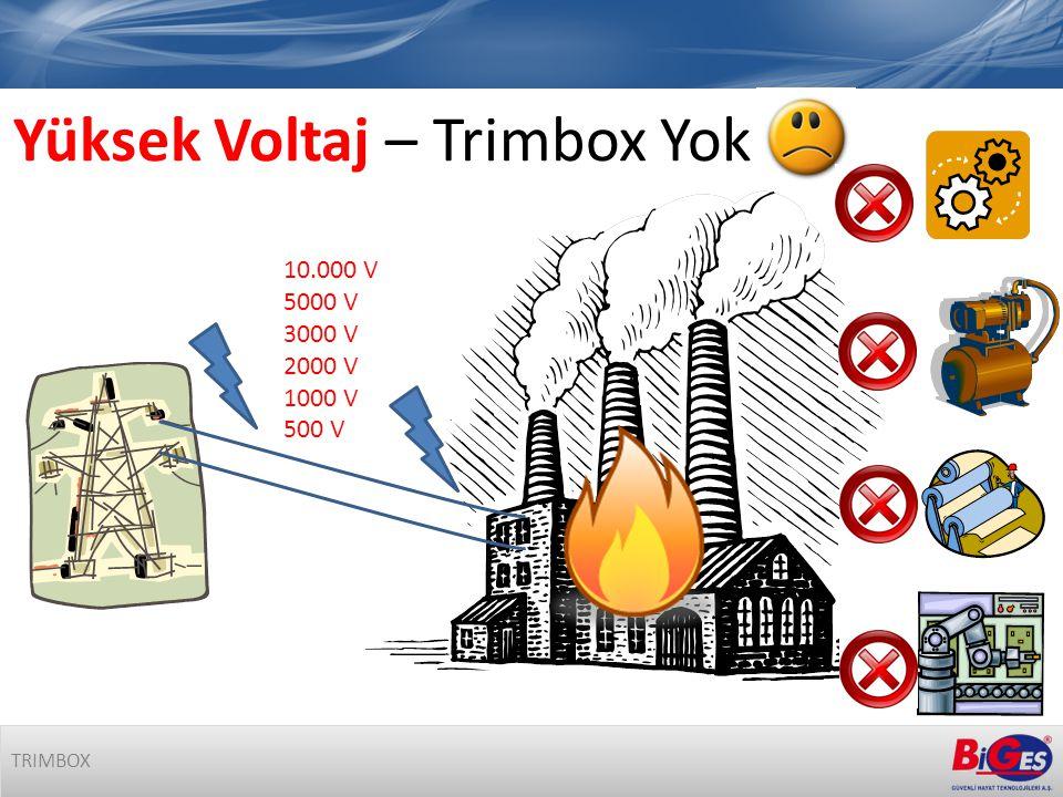 Yüksek Voltaj – Trimbox Yok 10.000 V 5000 V 3000 V 2000 V 1000 V 500 V TRIMBOX