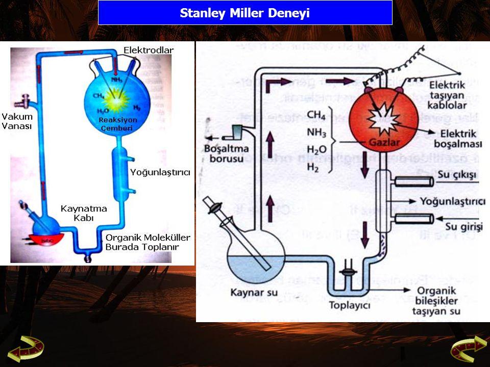 Stanley Miller Deneyi