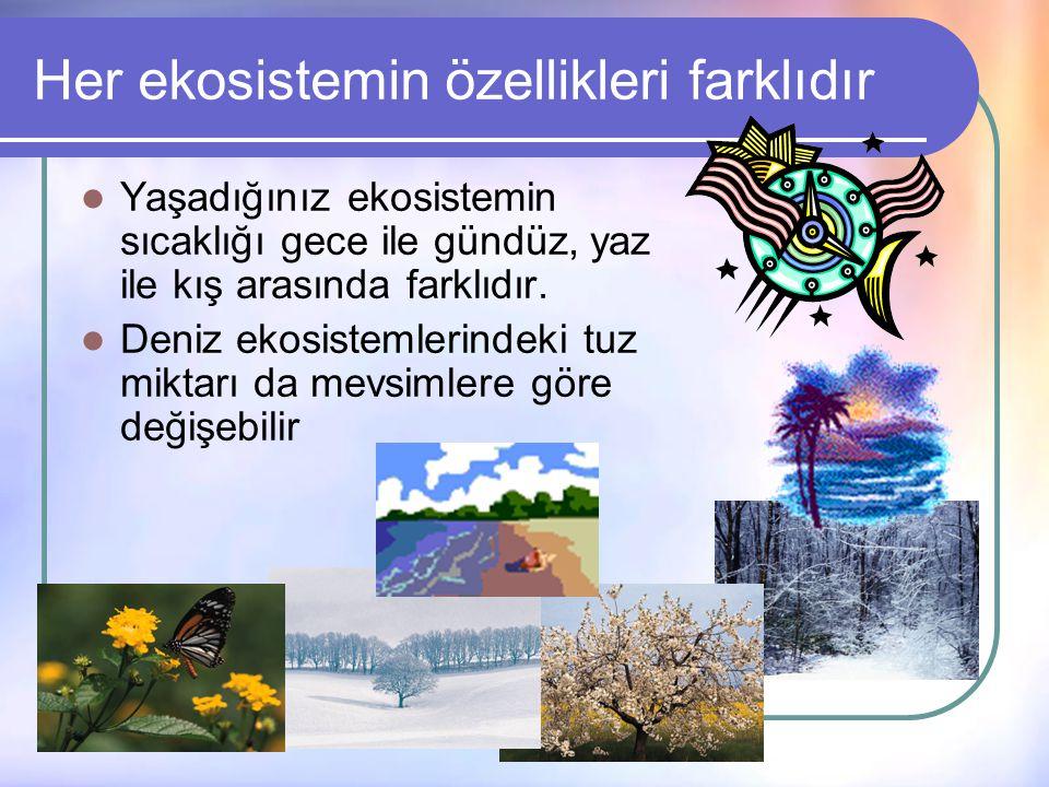 Sizce tüm ekosistemlerde bulunan elemanlar aynı özelikte midir?  Tuz gölü ekosisteminde sudaki tuz oranıyla, bir akarsu ekosisteminde bulunan sudaki