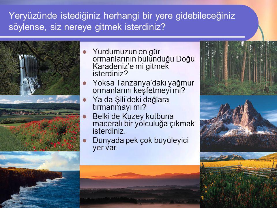 Ekosistem örneklerinden birini düşünününüz  Bu ekosistemdeki elemanları listeleyiniz.