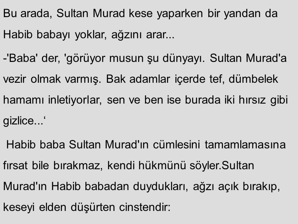 Bu arada, Sultan Murad kese yaparken bir yandan da Habib babayı yoklar, ağzını arar... -'Baba' der, 'görüyor musun şu dünyayı. Sultan Murad'a vezir ol