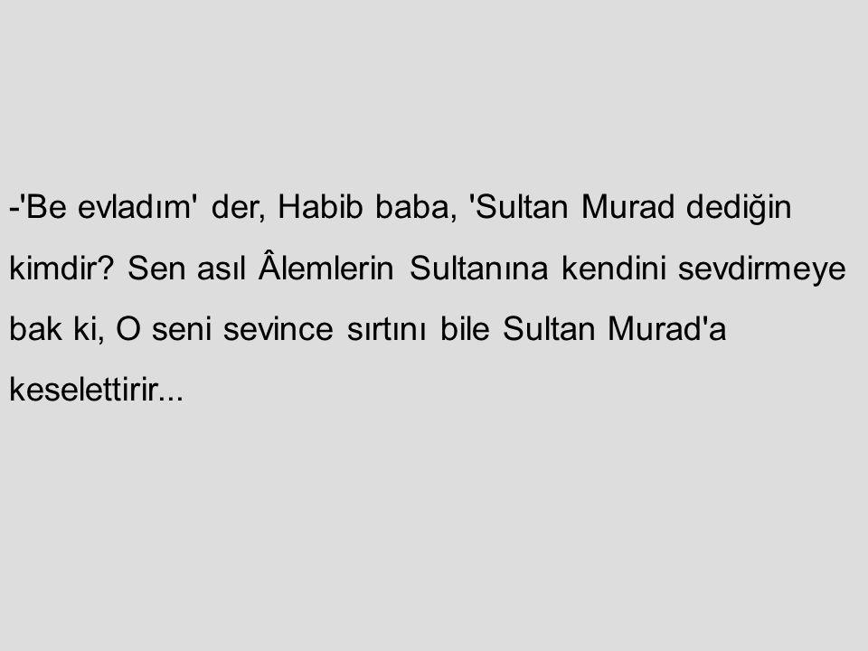 -'Be evladım' der, Habib baba, 'Sultan Murad dediğin kimdir? Sen asıl Âlemlerin Sultanına kendini sevdirmeye bak ki, O seni sevince sırtını bile Sulta