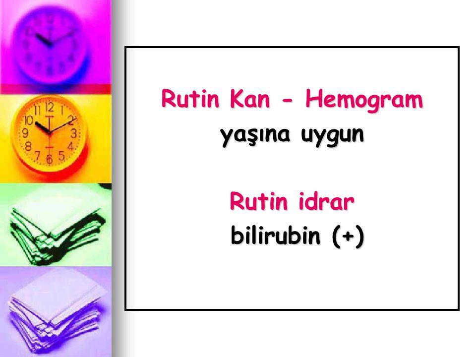 Rutin Kan - Hemogram yaşına uygun Rutin idrar bilirubin (+) bilirubin (+)