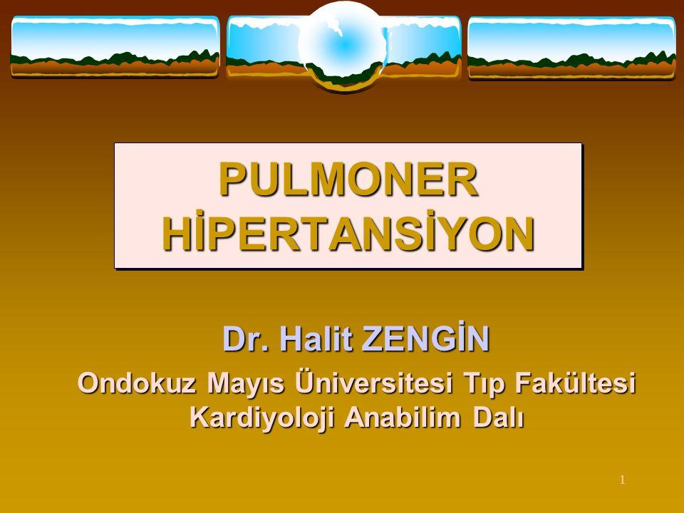 1 PULMONER HİPERTANSİYON Dr. Halit ZENGİN Ondokuz Mayıs Üniversitesi Tıp Fakültesi Kardiyoloji Anabilim Dalı