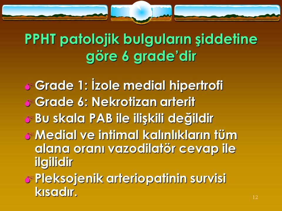 12 PPHT patolojik bulguların şiddetine göre 6 grade'dir  Grade 1: İzole medial hipertrofi  Grade 6: Nekrotizan arterit  Bu skala PAB ile ilişkili d
