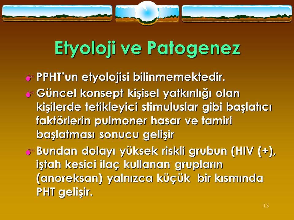13 Etyoloji ve Patogenez  PPHT'un etyolojisi bilinmemektedir.  Güncel konsept kişisel yatkınlığı olan kişilerde tetikleyici stimuluslar gibi başlatı