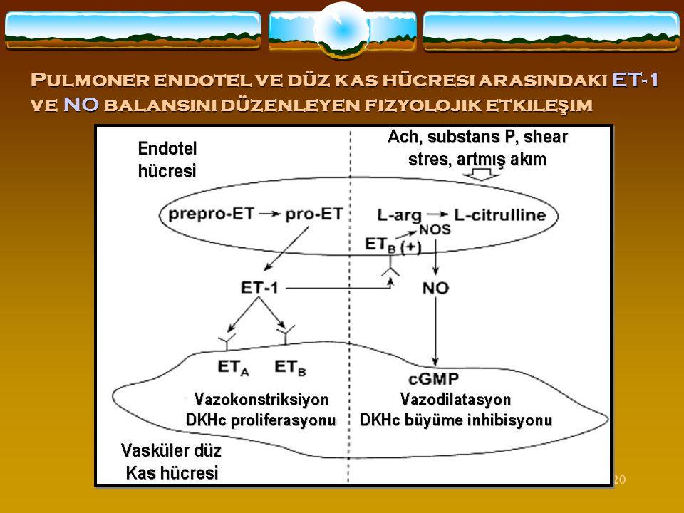 20 Pulmoner endotel ve düz kas hücresi arasındaki ET-1 ve NO balansını düzenleyen fizyolojik etkile ş im
