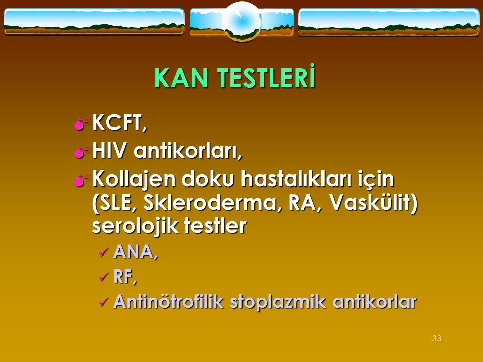 33 KAN TESTLERİ  KCFT,  HIV antikorları,  Kollajen doku hastalıkları için (SLE, Skleroderma, RA, Vaskülit) serolojik testler  ANA,  RF,  Antinöt