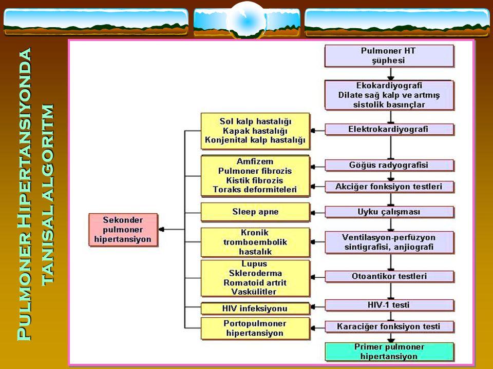 44 Pulmoner Hipertansiyonda tanısal algoritm