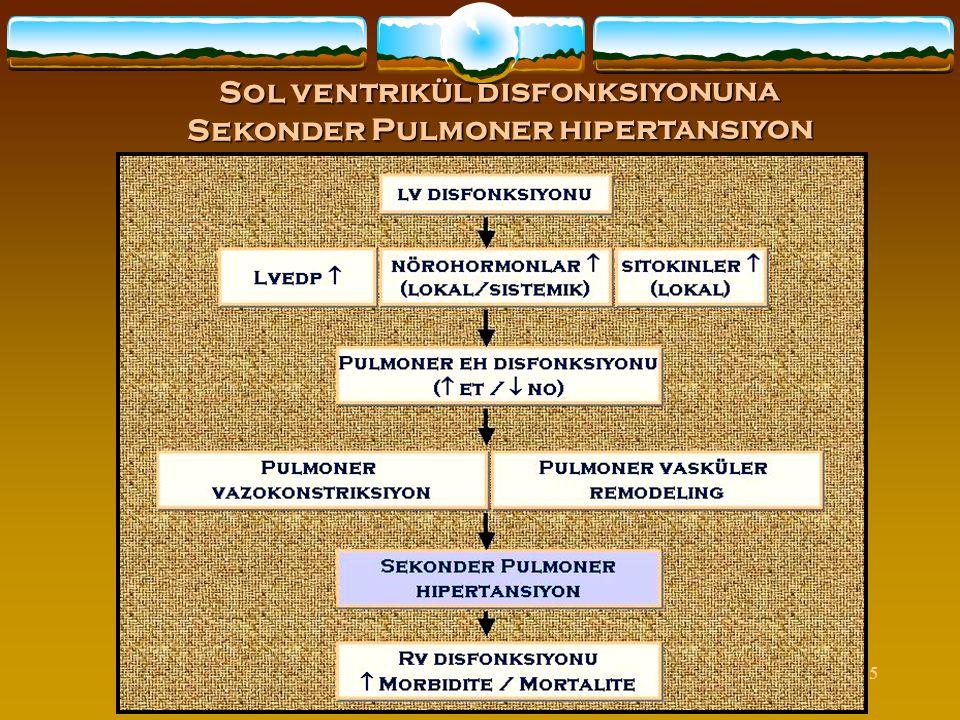 45 Sol ventrikül disfonksiyonuna Sekonder Pulmoner hipertansiyon