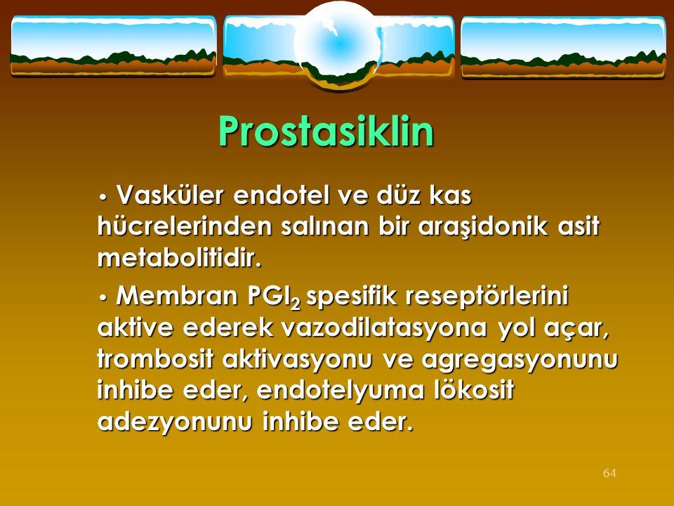 64 Prostasiklin • Vasküler endotel ve düz kas hücrelerinden salınan bir araşidonik asit metabolitidir. • Membran PGI 2 spesifik reseptörlerini aktive