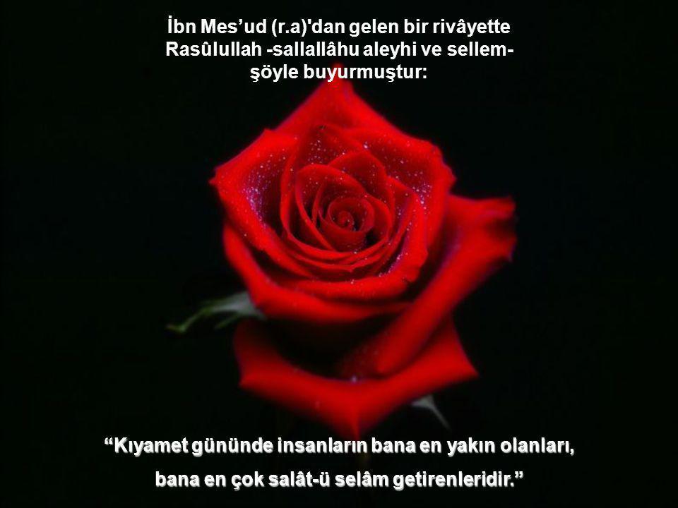 """""""Kim bana bir defa salât-ü selâm getirirse, bu sebeple Allah Teâlâ da ona on misli merhamet eder. O kimsenin on günahını bağışlar ve manevi dereceleri"""