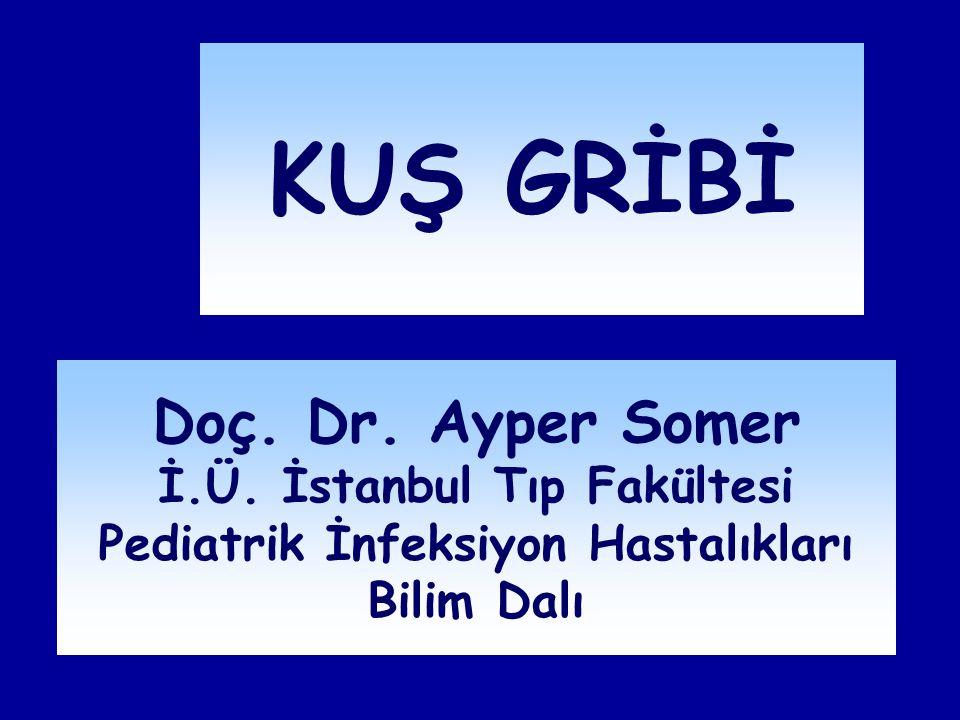 KUŞ GRİBİ Doç. Dr. Ayper Somer İ.Ü. İstanbul Tıp Fakültesi Pediatrik İnfeksiyon Hastalıkları Bilim Dalı