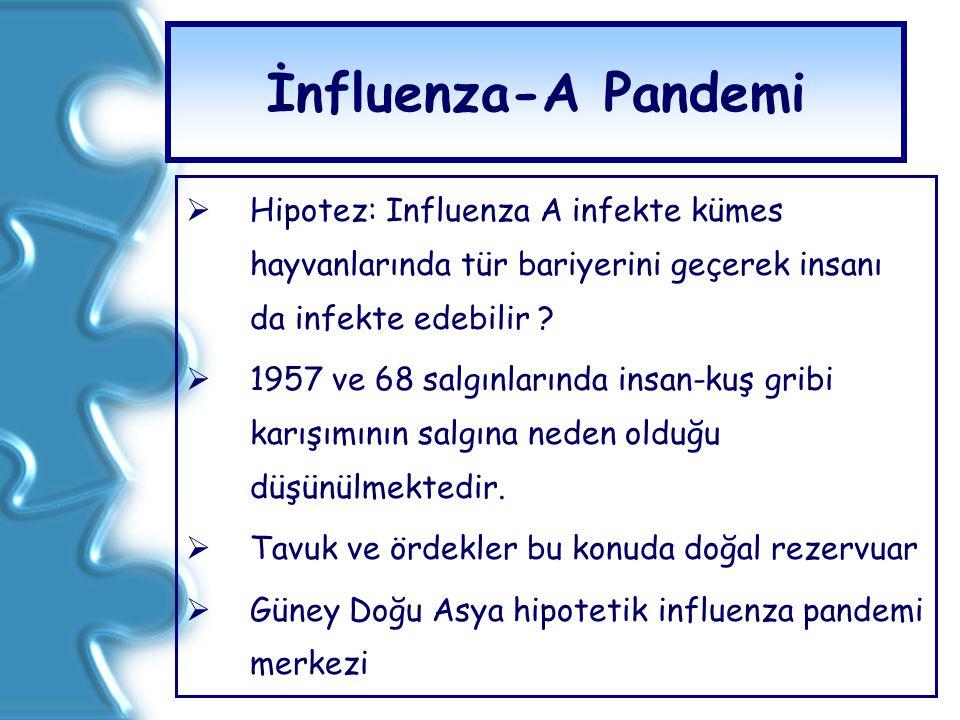 İnfluenza-A Pandemi  Hipotez: Influenza A infekte kümes hayvanlarında tür bariyerini geçerek insanı da infekte edebilir ?  1957 ve 68 salgınlarında