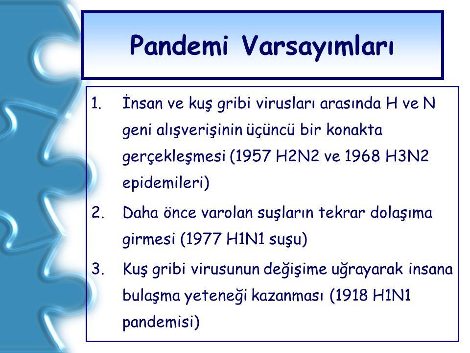 Pandemi Varsayımları 1.İnsan ve kuş gribi virusları arasında H ve N geni alışverişinin üçüncü bir konakta gerçekleşmesi (1957 H2N2 ve 1968 H3N2 epidem