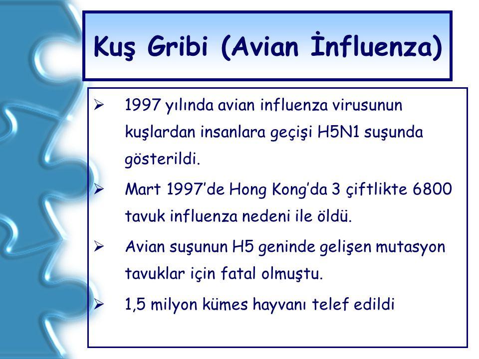 Kuş Gribi (Avian İnfluenza)  1997 yılında avian influenza virusunun kuşlardan insanlara geçişi H5N1 suşunda gösterildi.  Mart 1997'de Hong Kong'da 3