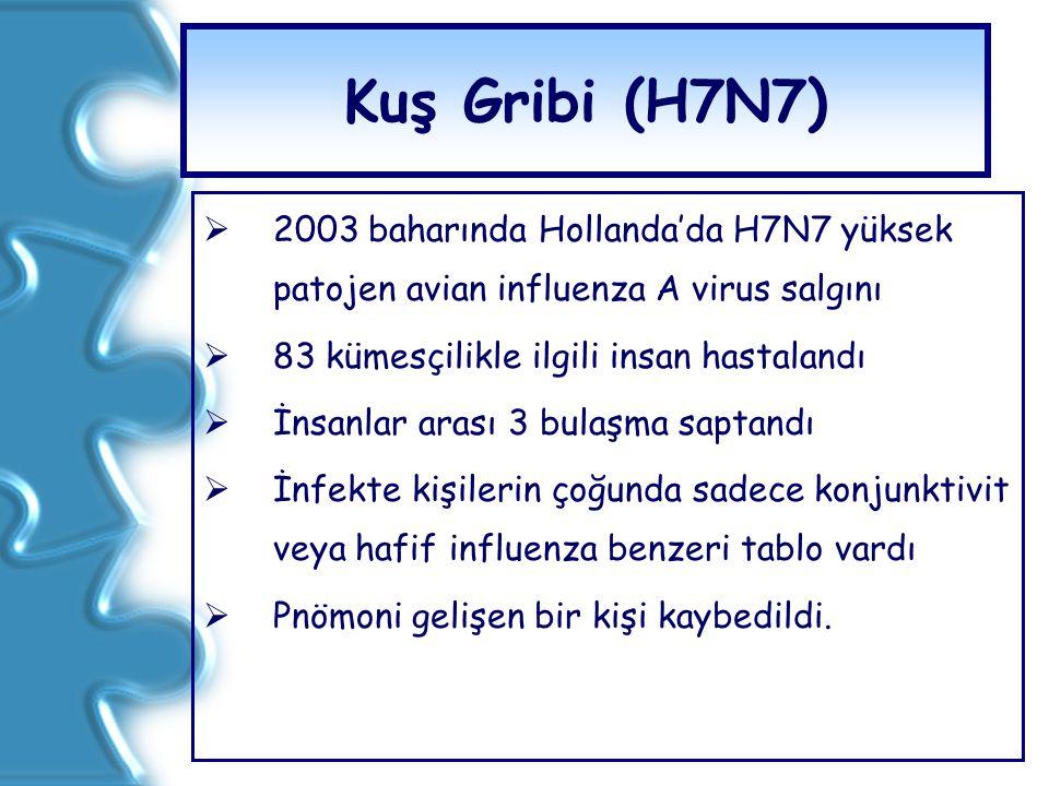 Kuş Gribi (H7N7)  2003 baharında Hollanda'da H7N7 yüksek patojen avian influenza A virus salgını  83 kümesçilikle ilgili insan hastalandı  İnsanlar
