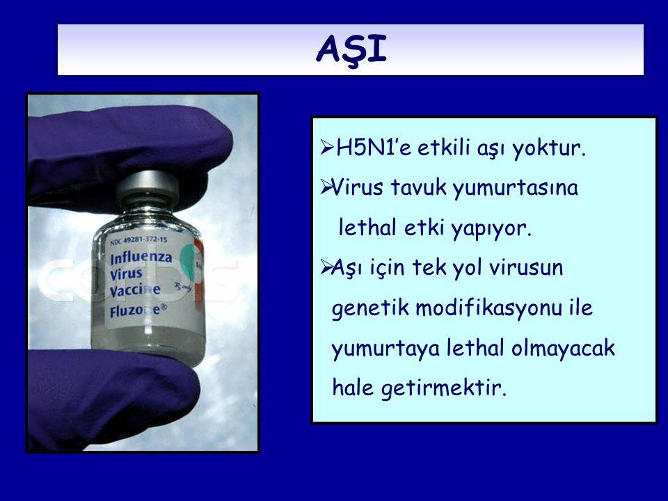 AŞI  H5N1'e etkili aşı yoktur.  Virus tavuk yumurtasına lethal etki yapıyor.  Aşı için tek yol virusun genetik modifikasyonu ile yumurtaya lethal o