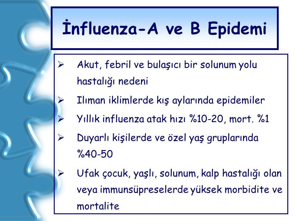 İnfluenza-A ve B Epidemi  Akut, febril ve bulaşıcı bir solunum yolu hastalığı nedeni  Ilıman iklimlerde kış aylarında epidemiler  Yıllık influenza