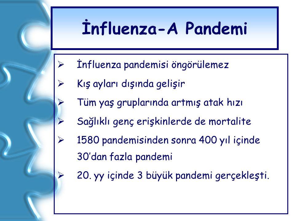 İnfluenza-A Pandemi  İnfluenza pandemisi öngörülemez  Kış ayları dışında gelişir  Tüm yaş gruplarında artmış atak hızı  Sağlıklı genç erişkinlerde