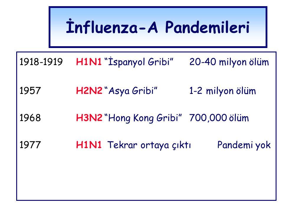 "İnfluenza-A Pandemileri 1918-1919H1N1""İspanyol Gribi"" 20-40 milyon ölüm 1957H2N2""Asya Gribi""1-2 milyon ölüm 1968H3N2""Hong Kong Gribi""700,000 ölüm 1977"
