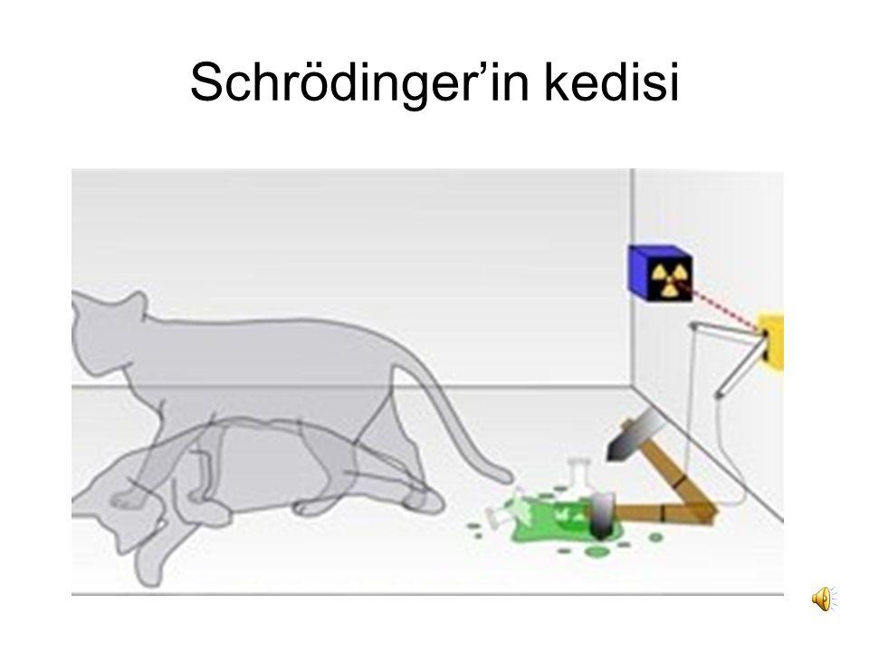 Schrödinger'in kedisi