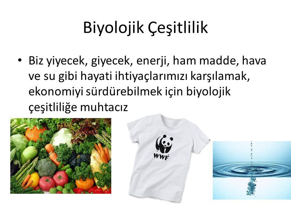 Biyolojik Çeşitlilik • Biz yiyecek, giyecek, enerji, ham madde, hava ve su gibi hayati ihtiyaçlarımızı karşılamak, ekonomiyi sürdürebilmek için biyolo