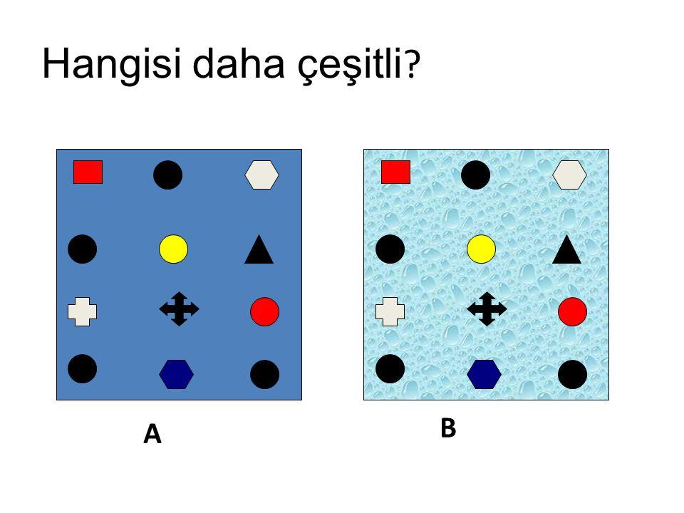 Hangisi daha çeşitli ? A B