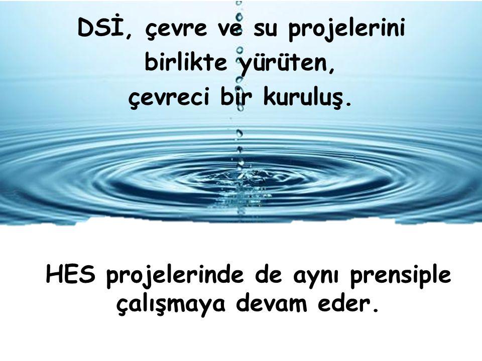 DSİ, çevre ve su projelerini birlikte yürüten, çevreci bir kuruluş.