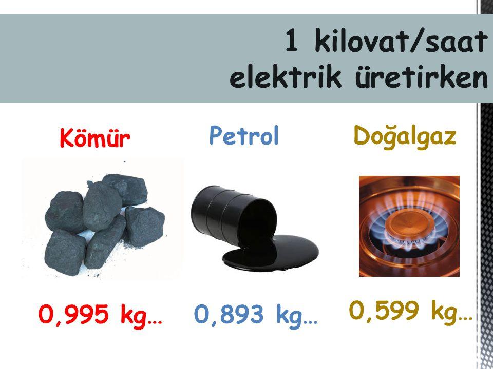 Kömür 0,995 kg… Petrol 0,893 kg… Doğalgaz 0,599 kg… 1 kilovat/saat elektrik üretirken