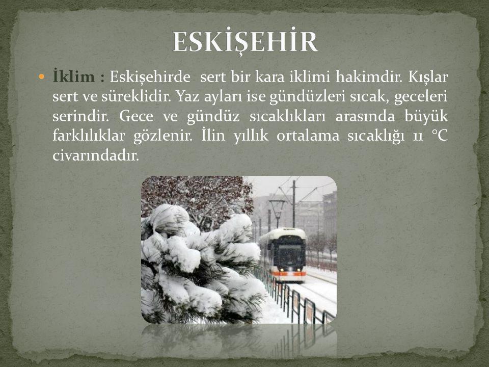  İklim : Eskişehirde sert bir kara iklimi hakimdir.
