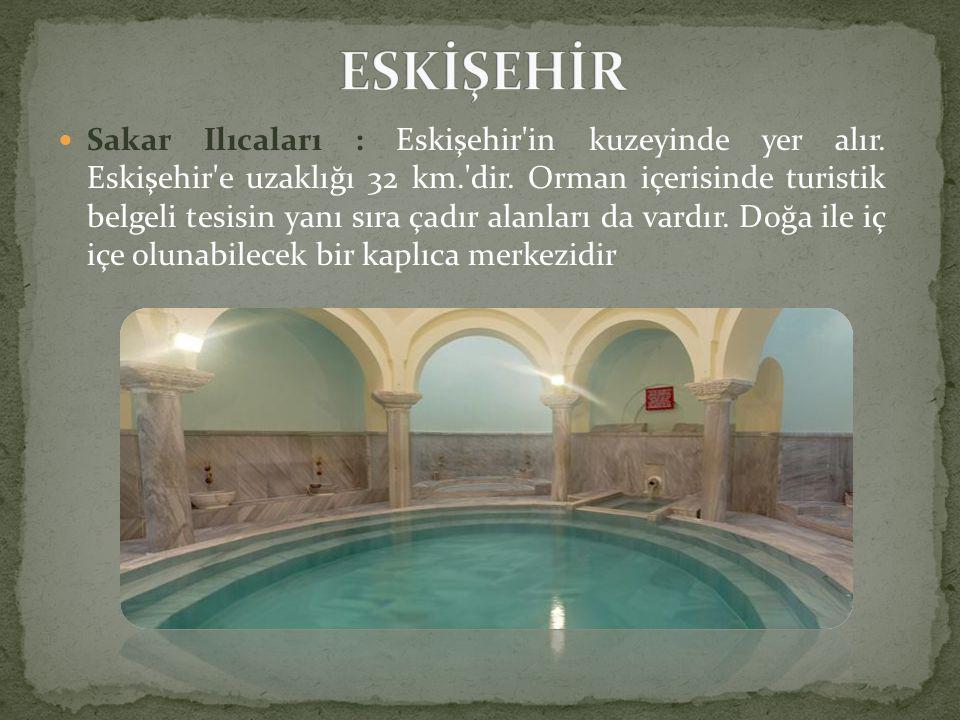  Sakar Ilıcaları : Eskişehir in kuzeyinde yer alır.