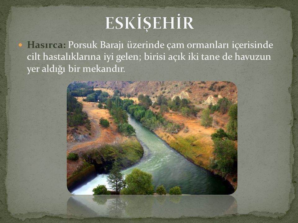  Hasırca: Porsuk Barajı üzerinde çam ormanları içerisinde cilt hastalıklarına iyi gelen; birisi açık iki tane de havuzun yer aldığı bir mekandır.