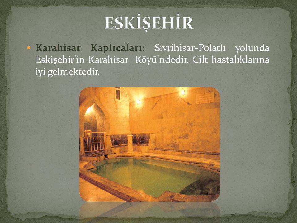  Karahisar Kaplıcaları: Sivrihisar-Polatlı yolunda Eskişehir in Karahisar Köyü ndedir.