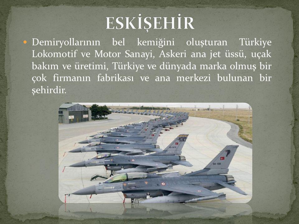  Demiryollarının bel kemiğini oluşturan Türkiye Lokomotif ve Motor Sanayi, Askeri ana jet üssü, uçak bakım ve üretimi, Türkiye ve dünyada marka olmuş bir çok firmanın fabrikası ve ana merkezi bulunan bir şehirdir.