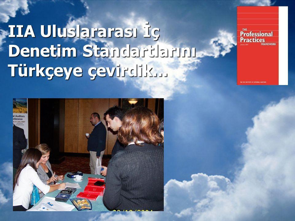 IIA Uluslararası İç Denetim Standartlarını Türkçeye çevirdik...