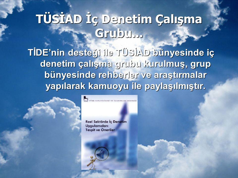 TÜSİAD İç Denetim Çalışma Grubu... TİDE'nin desteği ile TÜSİAD bünyesinde iç denetim çalışma grubu kurulmuş, grup bünyesinde rehberler ve araştırmalar