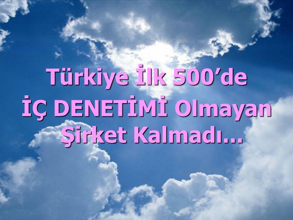 Türkiye İlk 500'de İÇ DENETİMİ Olmayan Şirket Kalmadı...