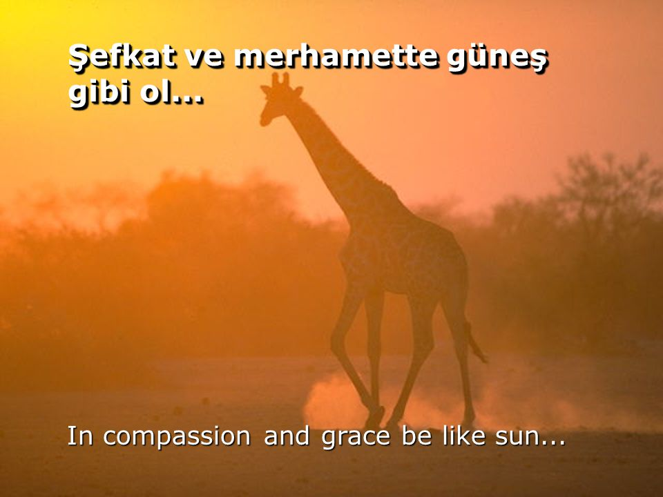 55 Şefkat ve merhamette güneş gibi ol... In compassion and grace be like sun...