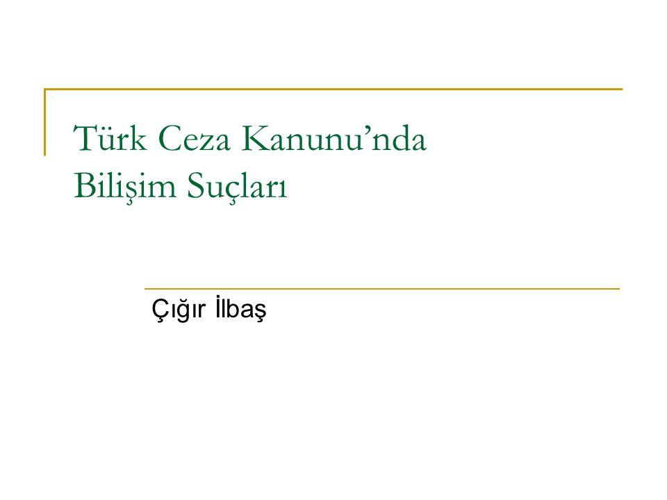 Türk Ceza Kanunu'nda Bilişim Suçları Çığır İlbaş