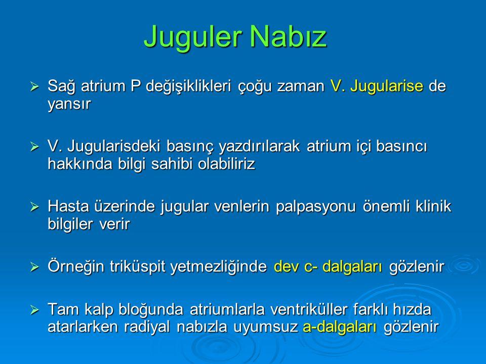 Juguler Nabız  Sağ atrium P değişiklikleri çoğu zaman V. Jugularise de yansır  V. Jugularisdeki basınç yazdırılarak atrium içi basıncı hakkında bilg